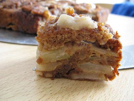 עוגת תפוחים דיאטטית (צילום: מילקי 10, פורום דיאטות ואורח חיים בריא של תפוז)