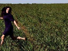 קרן פלס, עטיפת סינגל, הצפון פורח (צילום: זיו קורן)