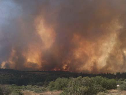 שריפה גדולה משתוללת בעין תינה. ארכיון (צילום: חדשות 2)