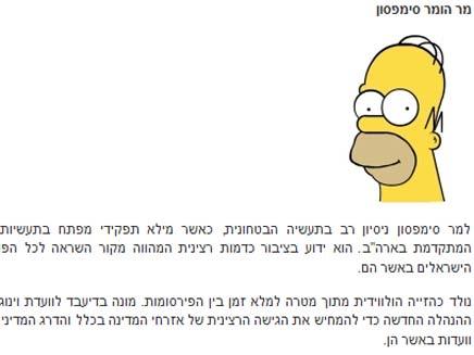 הומר סימפסון באתר האינטרנט של וינוגרד (צילום: צילום מסך)