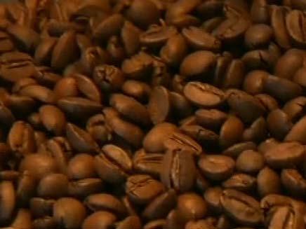 פולי קפה. ארכיון (צילום: חדשות 2)