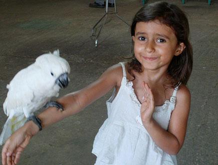 ילדה עם תוכי חוות התוכים כפר הס (צילום: שירלי אהרון)