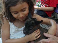 ילדה עם גדי חוות התוכים כפר הס (צילום: שירלי אהרון)