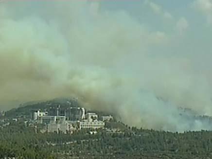 נזקי השריפות בירושלים (צילום: חדשות 2)