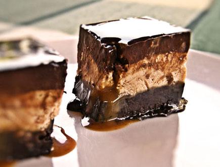 ריבועי שוקולד ומוס ריבת חלב