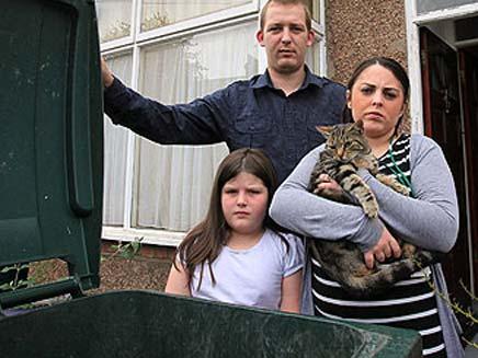 לולה החתולה ומשפחתה (צילום: הסאן)