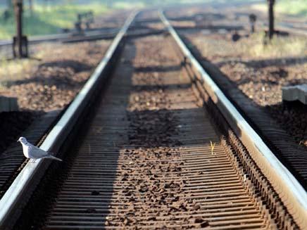 איחר לרכבת הרוחות (צילום: רויטרס)