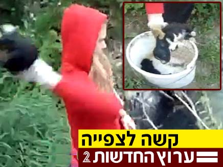 זורקת למים גורי כלבים (צילום: פייסבוק)