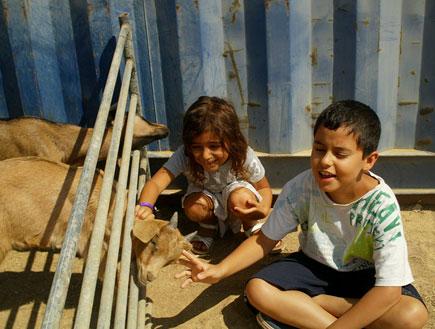 חוות נאות ילדים וגדיים
