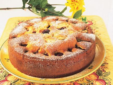 עוגת שזיפים במיץ תפוזים (צילום: פיליפ מטראי, קופסת המתכונים: עוגות, הוצאת מודן)