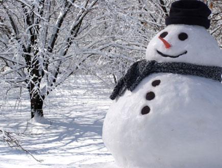 snow (צילום: akaplummer, Istock)