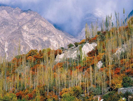 עמק הונזה, פקיסטן (צילום: נפתלי הילגר)