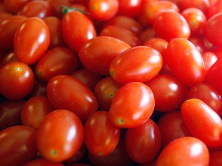 חרף ההוזלה: העגבניות עדיין יקרות (צילום: רויטרס)