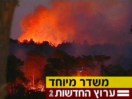 חיפה, שריפה, כרמל (צילום: חדשות 2)