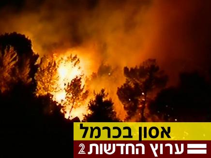 2 נעצרו בחשד לגרימת השריפה בכרמל (צילום: חדשות 2)