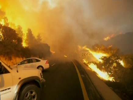 שריפה בכרמל - צלם נשיונל גאוגרפיק