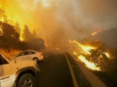 שריפה בכרמל - צלם נשיונל גאוגרפיק (צילום: רוני סופר)