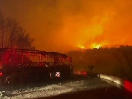 שריפה בכרמל - נשיונל גאוגרפיק (צילום: רוני סופר)