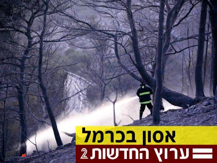 שריפת ענק בכרמל, כבאי מנסה להתמודד מול האש (צילום: חדשות 2)