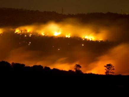 אסון בכרמל שריפה (צילום: רפי ממן)