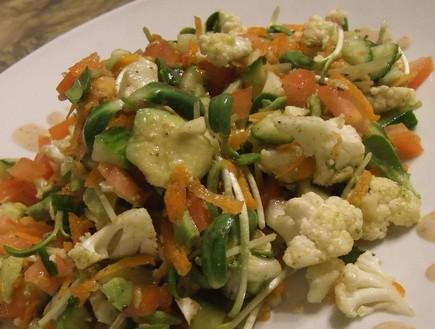 סלט ירקות בריאות (צילום: נטלי שוינקלשטיין , www.to-heal.com  )