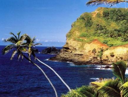 פיטקרן, האוקיינוס השקט (צילום: האתר הרשמי)