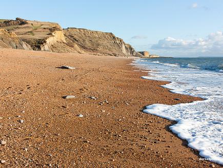 חוף אייפ (צילום: האתר הרשמי)
