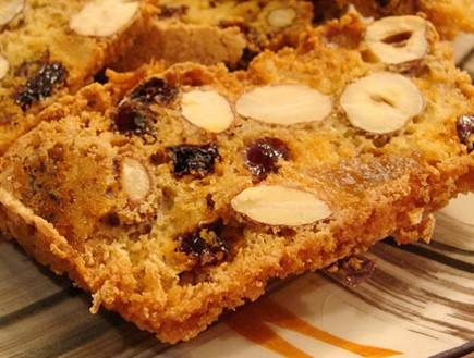 עוגת פירות יבשים (צילום: תומר פרת)