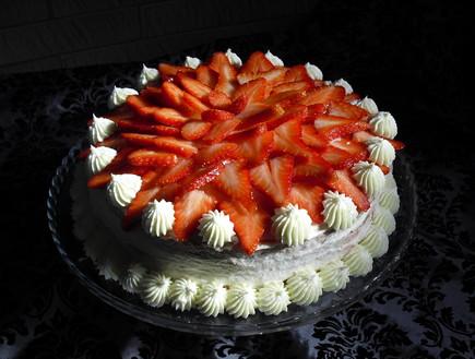 עוגת וניל ותותים של אביבה פיבקו (צילום: אביבה פיבקו)