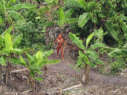 כך חיים בג'ונגל במאה ה-21 (צילום: FUNAI)