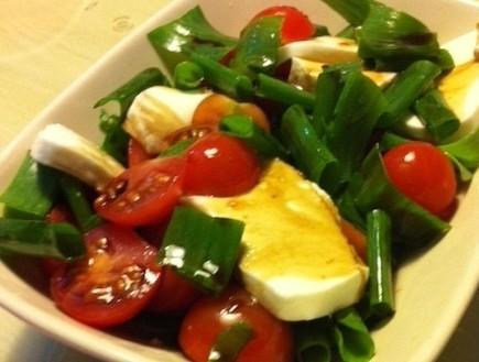 סלט עגבניות איטלקי (צילום: אדי מזרחי)