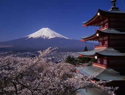 פריחה על רקע ההרים יפן (צילום: ארגון התיירות הלאומי ביפן, האתר הרשמי)