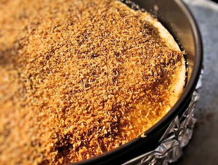 עוגת גבינה קוקוס מרנג - אחרי פיזור הקוקוס (צילום: דליה מאיר, קסמים מתוקים)