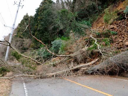 רעידת האדמה שפגעה ביפן. עלינו להתכונן אל (צילום: רויטרס)
