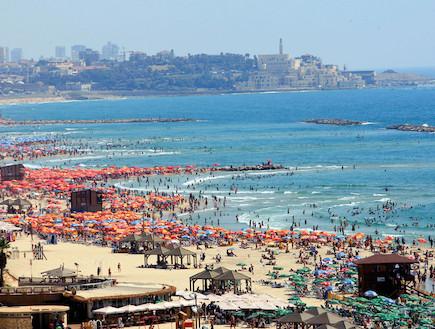 חוף עמוס בתל אביב (צילום: משה שי לפלאש 90)