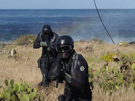 כך תתקבל ליחידה שחיסלה את בן לאדן (צילום: navy seal)