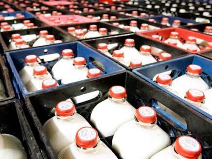 בקבוקי חלב (צילום: חדשות 2)