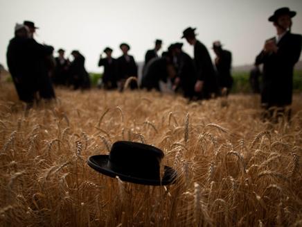 חג האסיף באווירה סגרירית (צילום: AP)