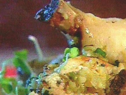 תבשיל עוף ובורגול