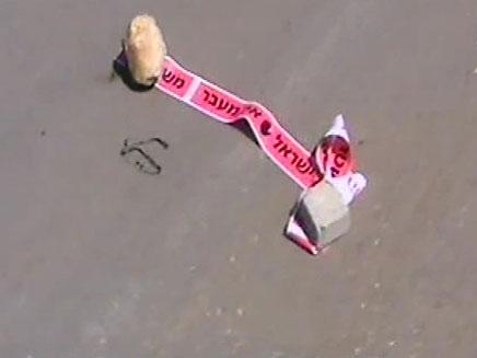 תאונת פגע וברח בשרון, אולפנה (צילום: חדשות 2)