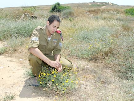 חייל בשדה קוטף פרח (צילום: עודד קרני, פז