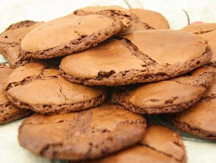 עוגיות שוקולד דחוסות (צילום: מנחה נופה)