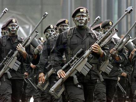 כוח מיוחד של צבא מקסיקו עם רובה צלפים בארט (צילום:  Diego Fernández, ויקיפדיה)