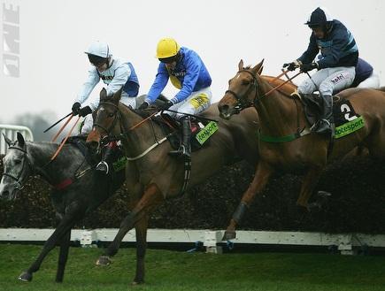 מירוץ סוסים. 30 סוסים ישתתפו בתחרות (GettyImages) (צילום: מערכת ONE)