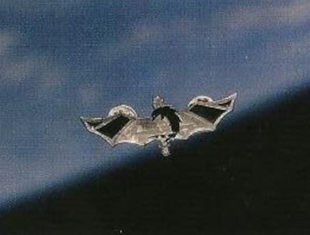 """סיכת הלוחם של טל רמון בחלל (צילום: דובר צה""""ל)"""