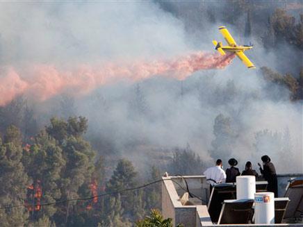 השריפה ביער ירושלים, אתמול (צילום: AP)