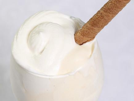 גלידת וניל של אביבה (צילום: עודד קרני)