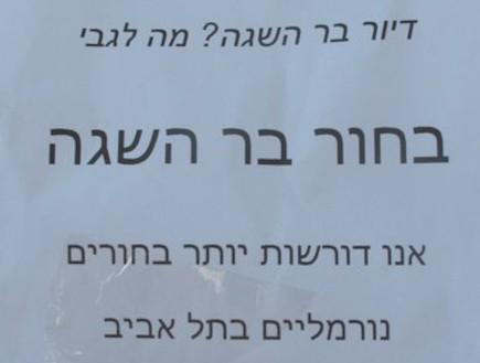 שלטי המחאה - מחאת הרווקות (צילום: mako)