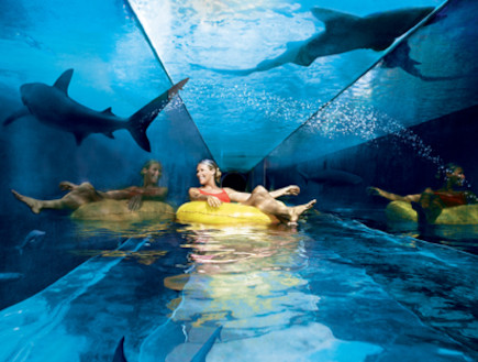 מגלשה מתחת למים (צילום: האתר הרשמי)