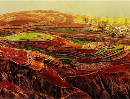 שדות צבעוניים בסין עם כפר